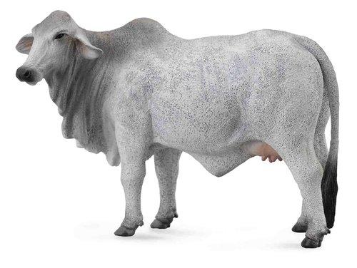 kaufe eine kuh