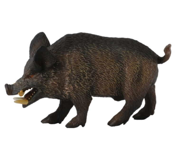 Collecta 88363 Wild Boar 8 cm Wild Animals