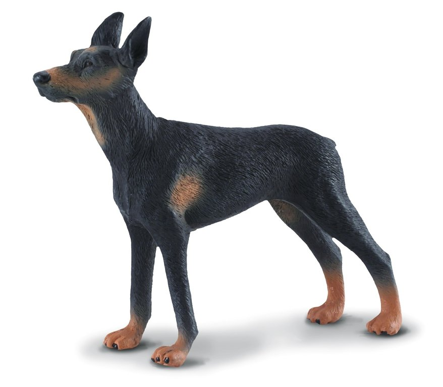 Collecta 88086 Doberman Pinscher 10 cm Dogs and Cats
