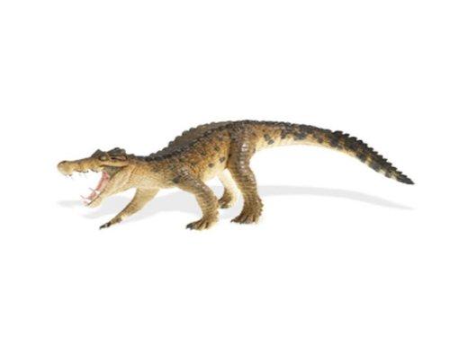Safari Ltd 411801 Carnotaurus Série de 17 Cm Série Dinosaures