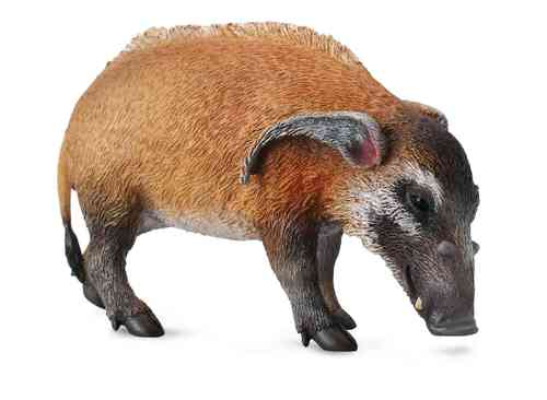 Collecta 88554 pig 9 cm Wild Animals