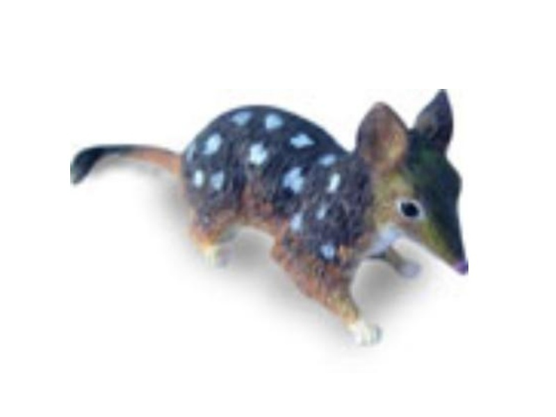 Animals of Australia Science and Nature 75381 Beutelmarder Quoll 7 cm