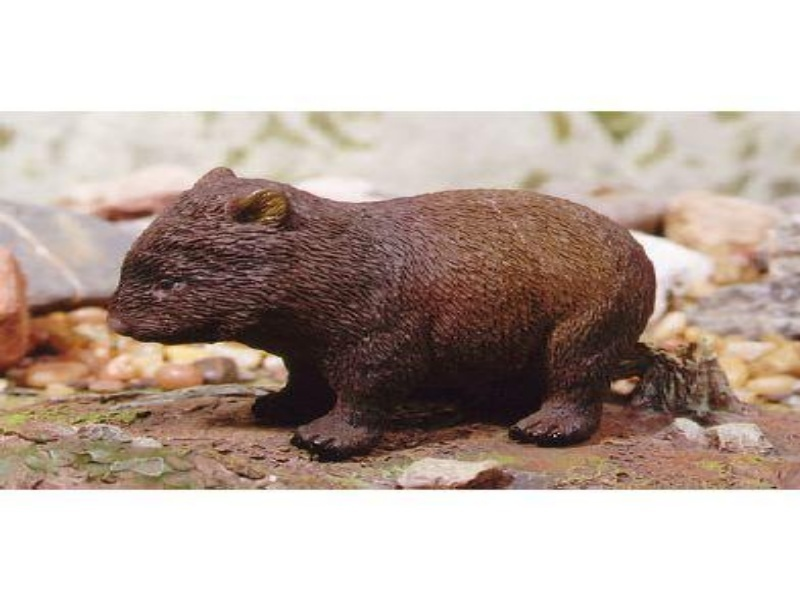 Animals of Australia Science and Nature 75454 Wombat 11 cm