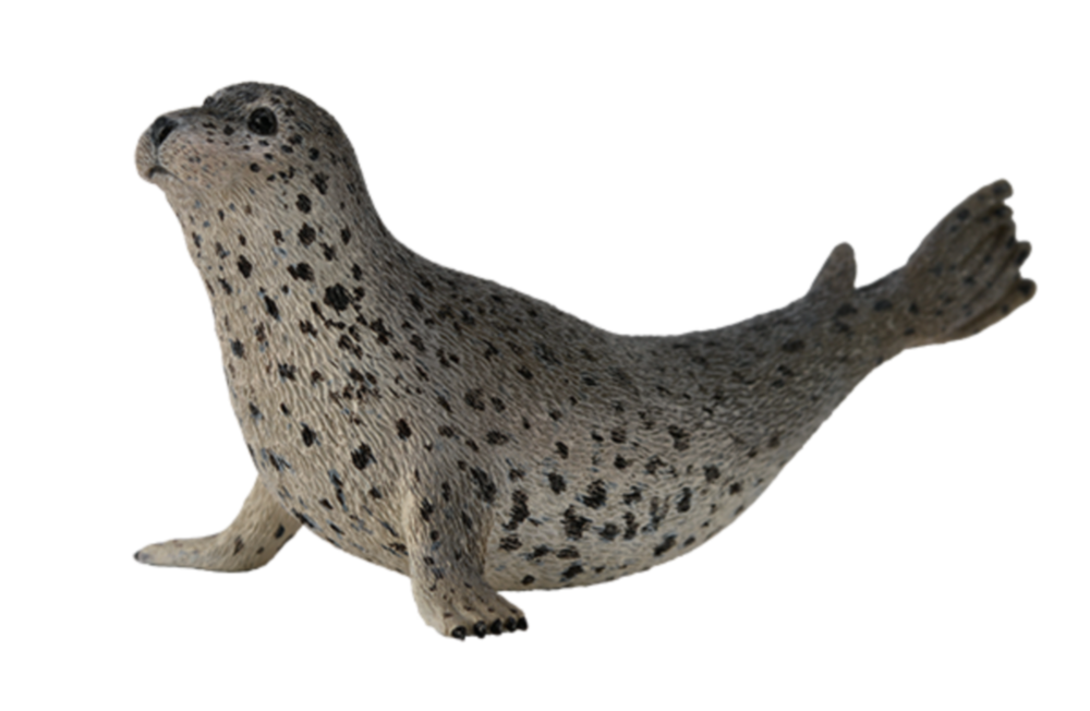 Collecta 88658 seal 10 cm Water Animals