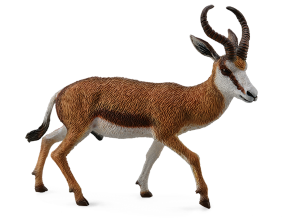 Collecta 88684 Springbock Antilope 8 cm Wildtiere