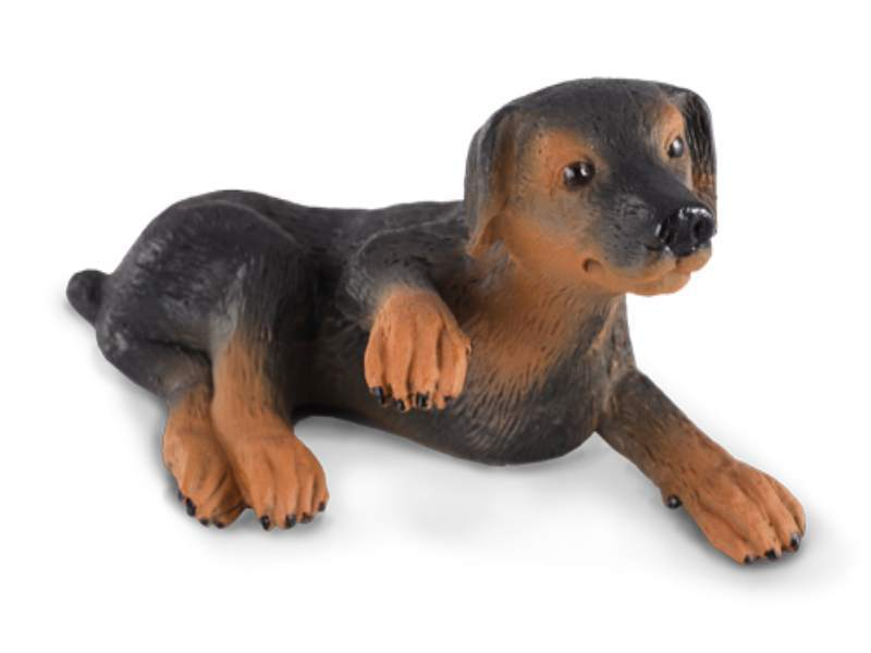 Collecta 88087 Doberman puppy 5 cm Dogs and Cats