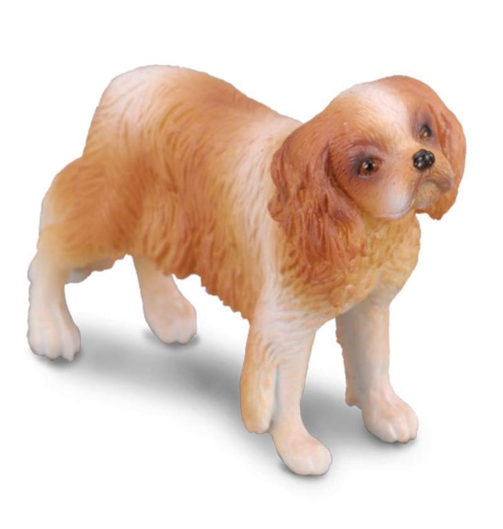 Collecta 88181 Cavalier King Charles Spaniel 5 cm Dogs and Cats