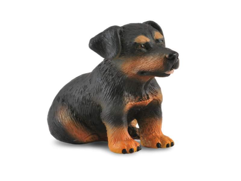 Collecta 88190 rottweiler puppy 4 cm Dogs and Cats