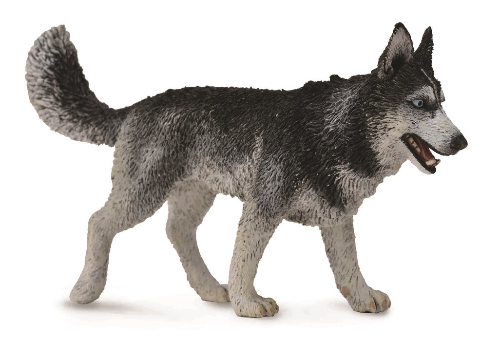 Collecta 88707 husky 10 cm Wild Animals