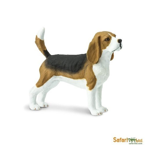 Safari Ltd 254929 Beagle 6 cm Series Dogs and Cats