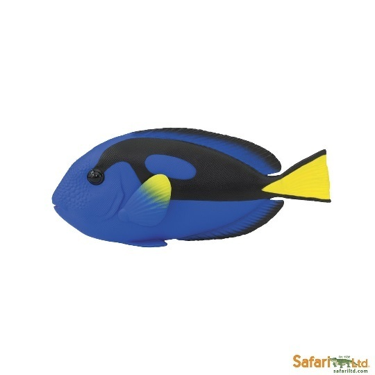 Safari Ltd 100039 Pallet Doctor Fish 11 cm Series Aquatic Animals