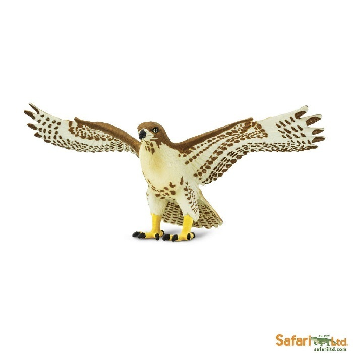 Safari Ltd 151029 Red-tailed Hawk 14 cm Series Wings of the Earth