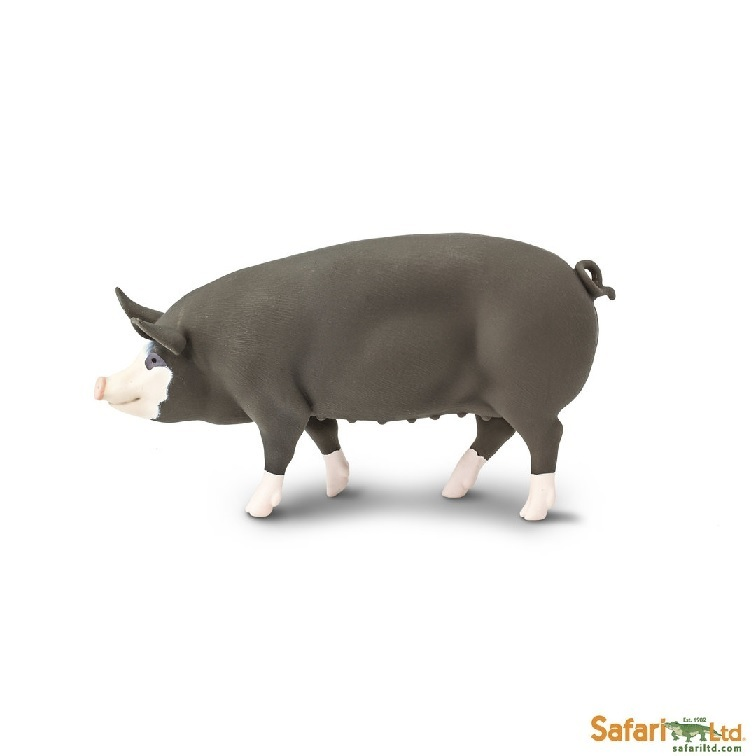 Safari Ltd 161929 Berkshire-Pig 11 cm Series Farmland