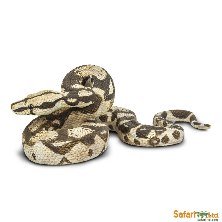 Safari Ltd 266529 Boa Constrictor 14 cm Series Reptiles