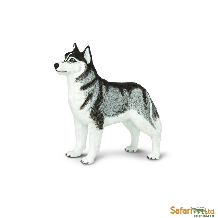 Safari Ltd 255229 Siberian Husky 8 cm Series Star from the Exhibition
