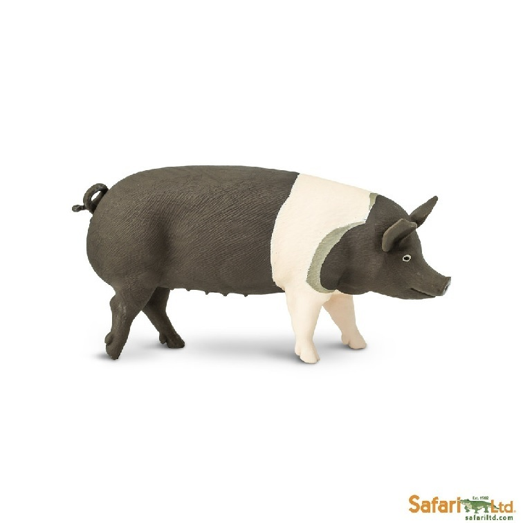 Safari Ltd 161829 Hampshire-Pig 10 cm Series Farmland