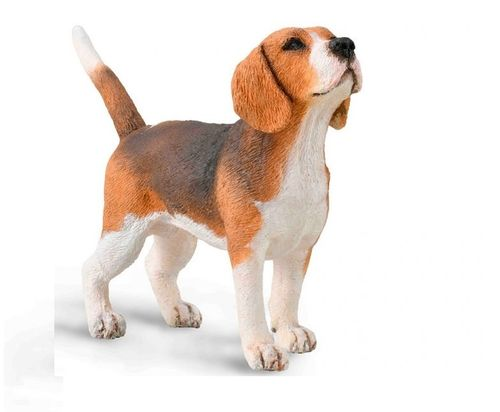 Collecta 88935 Beagle cm dogs and cats