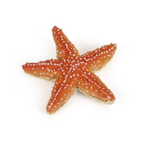 Papo 56050 starfish cm water world